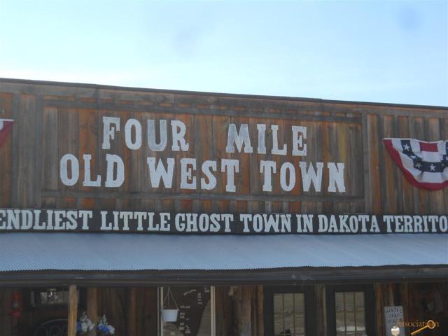 11919 Hwy 16, Custer, SD 57730 (MLS #143163) :: Christians Team Real Estate, Inc.