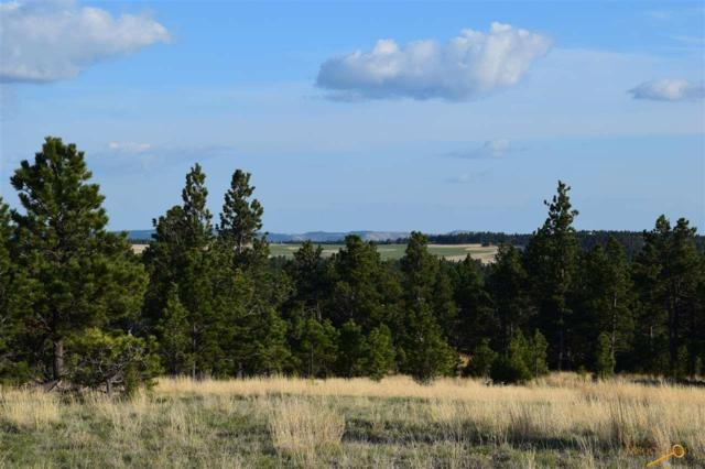 13 Elk Run Rd, Pringle, SD 57773 (MLS #143195) :: Christians Team Real Estate, Inc.