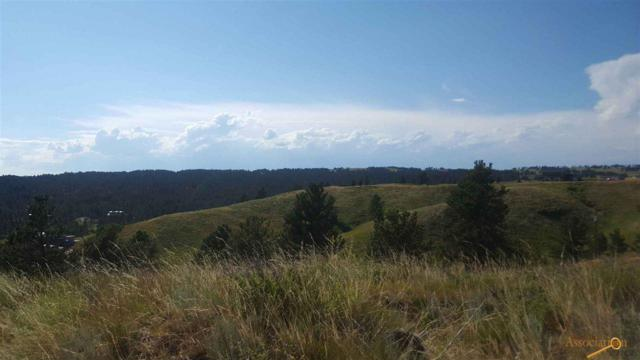 TBD Darcy Dr, Custer, SD 57747 (MLS #143236) :: Christians Team Real Estate, Inc.