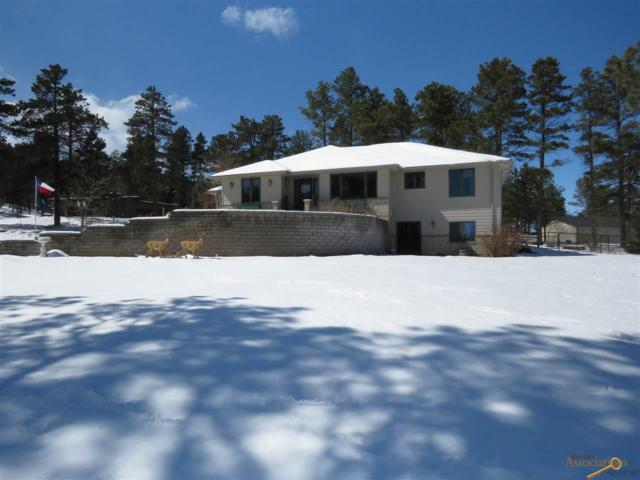 12433 Navajo Dr, Piedmont, SD 57769 (MLS #143403) :: Christians Team Real Estate, Inc.