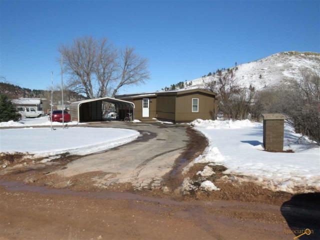 14860 E Valley View Dr, Piedmont, SD 57769 (MLS #143406) :: VIP Properties