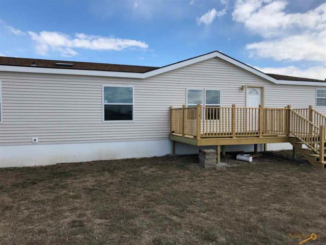 14766 Mustang Ln, Rapid City, SD 57703 (MLS #143518) :: Christians Team Real Estate, Inc.