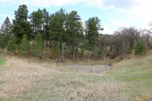 TBD Frontier Loop, Whitewood, SD 57793 (MLS #143530) :: Christians Team Real Estate, Inc.