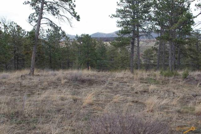 tbd Pine Hills Dr, Rapid City, SD 57702 (MLS #143572) :: Christians Team Real Estate, Inc.