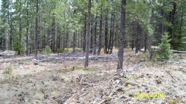 2138 Other, Deadwood, SD 57732 (MLS #143602) :: Christians Team Real Estate, Inc.