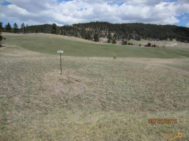 12144 Washington Loop, Sturgis, SD 57785 (MLS #143721) :: Christians Team Real Estate, Inc.