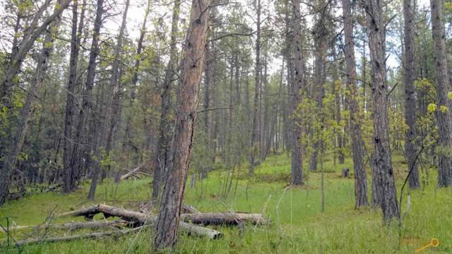 Berry Lane Boulder Canyon, Sturgis, SD 57785 (MLS #143729) :: Christians Team Real Estate, Inc.