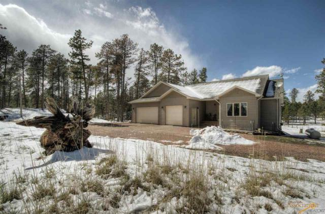 24006 Iron Horse Ct, Hill City, SD 57745 (MLS #143730) :: Christians Team Real Estate, Inc.