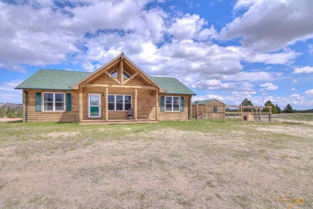 24664 Triple M Ranch Rd, Hermosa, SD 57744 (MLS #143749) :: VIP Properties