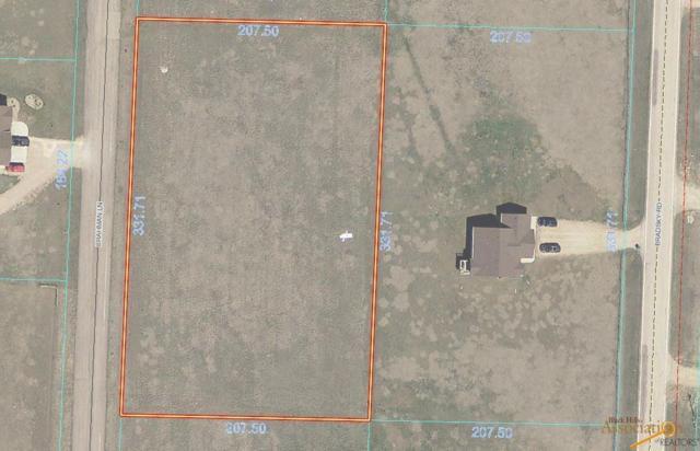 Lot 4B Brahman Lane, Rapid City, SD 57703 (MLS #143821) :: Dupont Real Estate Inc.