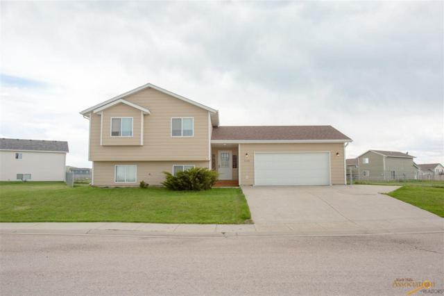 339 Freude Lane, Box Elder, SD 57719 (MLS #143891) :: VIP Properties