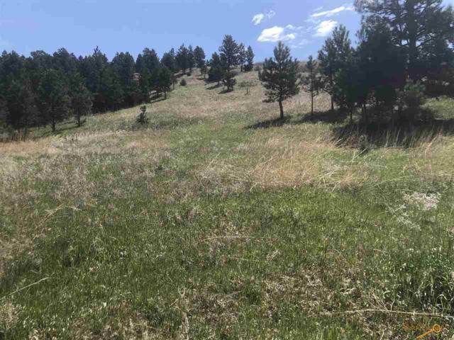 TBD Battle Creek Rd, Hermosa, SD 57744 (MLS #143903) :: VIP Properties