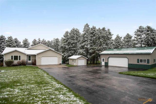 23799 Golden Hills Dr, Rapid City, SD 57702 (MLS #143984) :: Christians Team Real Estate, Inc.
