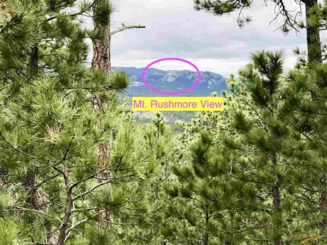 24320 Playhouse Rd, Keystone, SD 57751 (MLS #143995) :: Christians Team Real Estate, Inc.