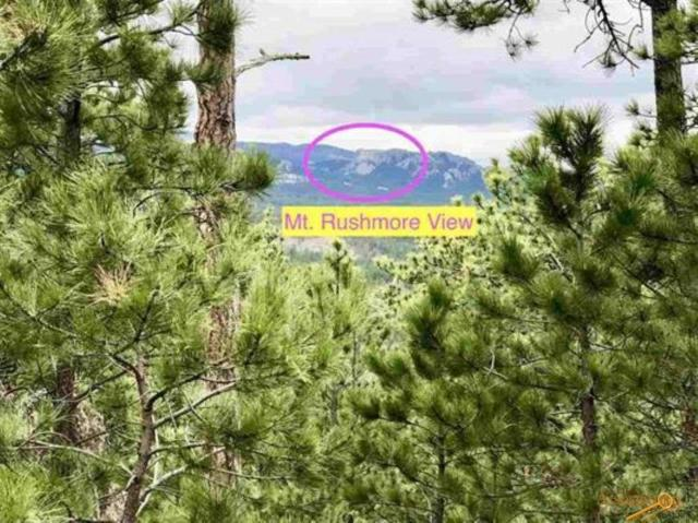 24320 Playhouse Rd, Keystone, SD 57751 (MLS #143996) :: Christians Team Real Estate, Inc.