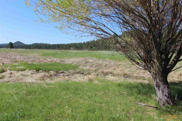 Lot 7 Golden Willow Parkway, Custer, SD 57730 (MLS #144130) :: Daneen Jacquot Kulmala & Steve Kulmala