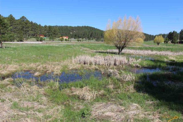 Lot 8 Golden Willow Parkway, Custer, SD 57730 (MLS #144131) :: Daneen Jacquot Kulmala & Steve Kulmala