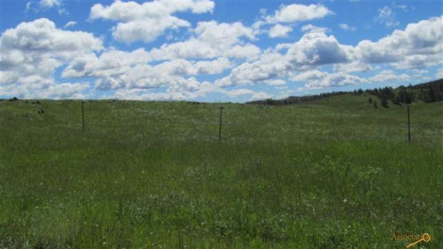 TBD Deerfield Rd, Hill City, SD 57745 (MLS #144167) :: Dupont Real Estate Inc.