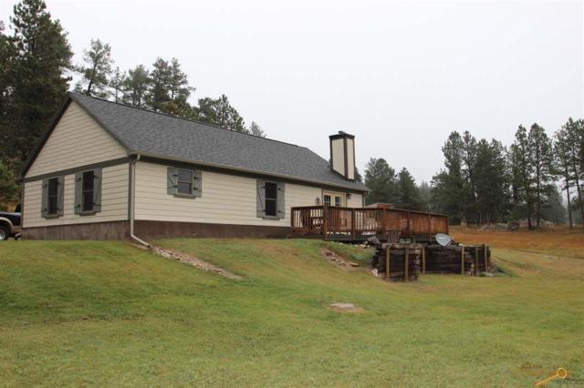 25781 Sidney Park Rd, Custer, SD 57730 (MLS #144366) :: Christians Team Real Estate, Inc.