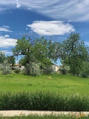 TBD Shaw Ct, Rapid City, SD 57703 (MLS #144476) :: Christians Team Real Estate, Inc.
