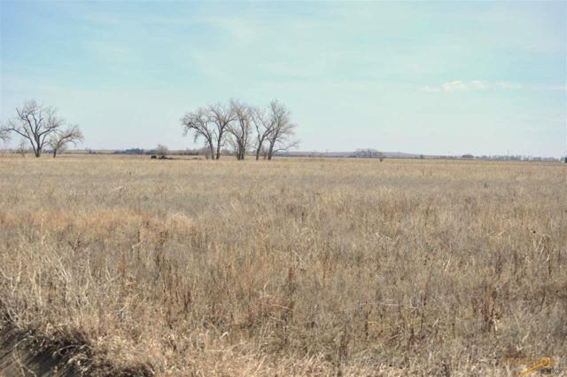 tbd Other, Nisland, SD 57762 (MLS #144480) :: Christians Team Real Estate, Inc.
