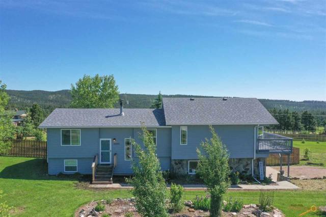 10400 Nemo Rd, Rapid City, SD 57702 (MLS #144593) :: Christians Team Real Estate, Inc.