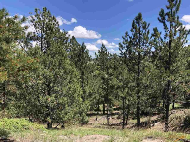 Vista Meadows 5 Elk Run Rd, Pringle, SD 57730 (MLS #144614) :: Christians Team Real Estate, Inc.