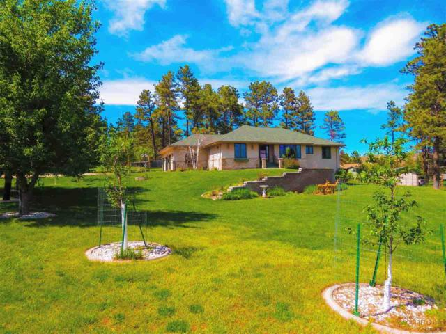 12433 Navajo Dr, Piedmont, SD 57769 (MLS #144639) :: Christians Team Real Estate, Inc.