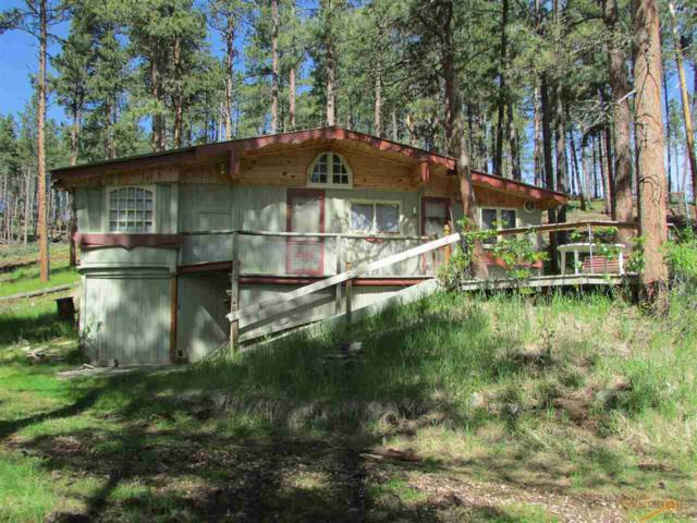 23225 Hwy 385, Rapid City, SD 57702 (MLS #144680) :: Christians Team Real Estate, Inc.