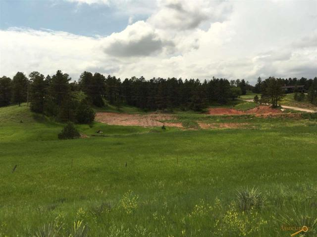 12815 Pine Haven Dr, Hot Springs, SD 57747 (MLS #144739) :: Christians Team Real Estate, Inc.