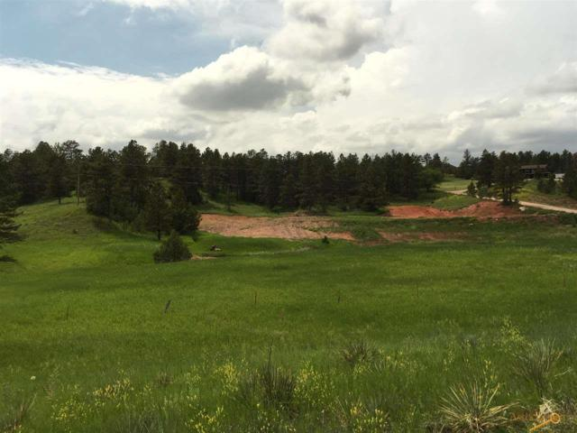 12815 Pine Haven Dr, Hot Springs, SD 57747 (MLS #144742) :: Christians Team Real Estate, Inc.