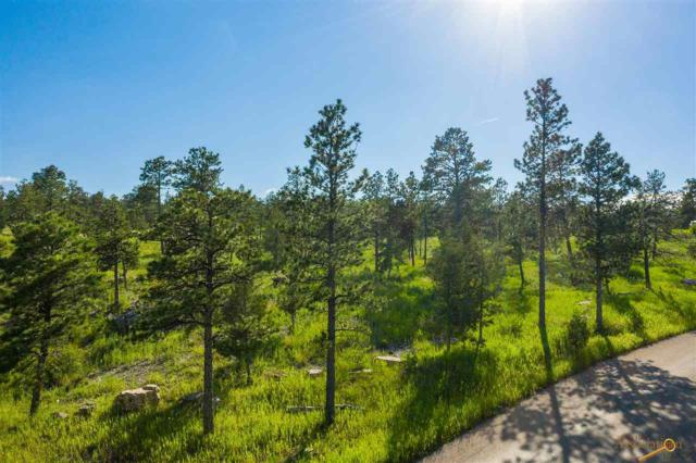TBD Pine Hills Dr, Rapid City, SD 57702 (MLS #144743) :: Christians Team Real Estate, Inc.