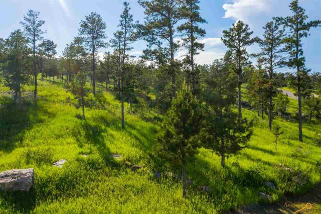 TBD Pine Hills Dr, Rapid City, SD 57702 (MLS #144744) :: Christians Team Real Estate, Inc.