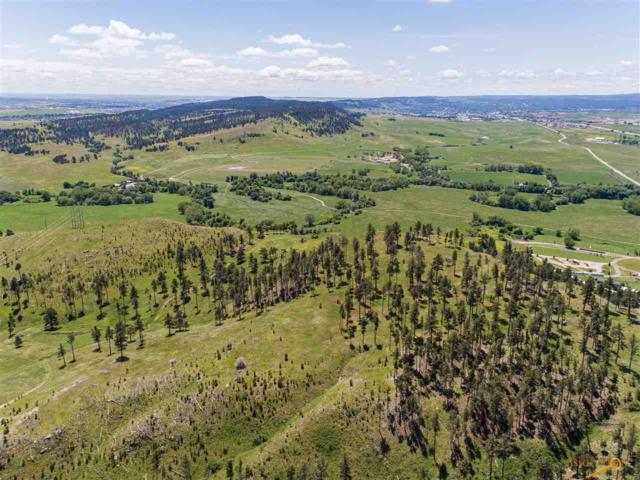 7101 Marvel Mountain Ridge Rd, Rapid City, SD 57702 (MLS #144767) :: Dupont Real Estate Inc.
