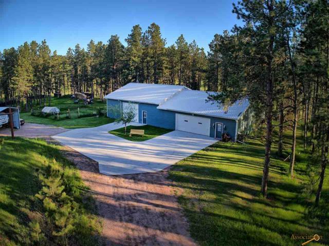 11847 Diamond Rd, Custer, SD 57730 (MLS #144777) :: Christians Team Real Estate, Inc.