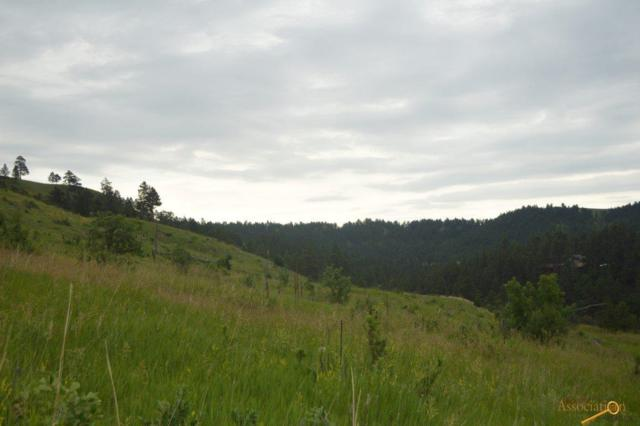 6390 Nameless Cave Rd, Rapid City, SD 57702 (MLS #144783) :: Christians Team Real Estate, Inc.