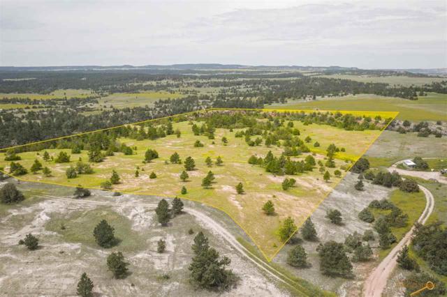 Lot 2 Lariat Rd, Custer, SD 57730 (MLS #144943) :: Christians Team Real Estate, Inc.