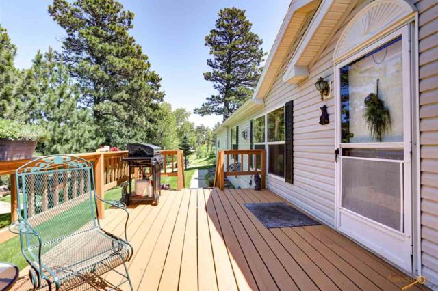 23651 Busted Five Ct, Rapid City, SD 57702 (MLS #144958) :: Christians Team Real Estate, Inc.