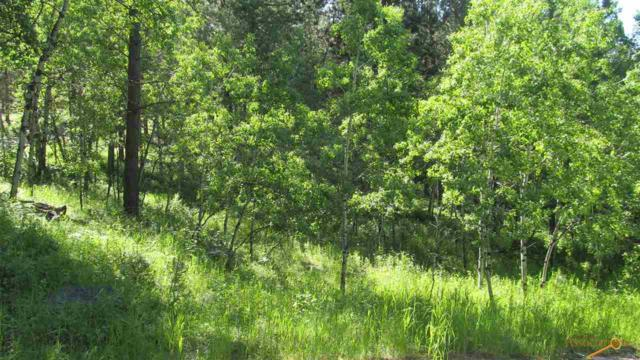 240 Brenner Pass, Hill City, SD 57745 (MLS #144960) :: Christians Team Real Estate, Inc.