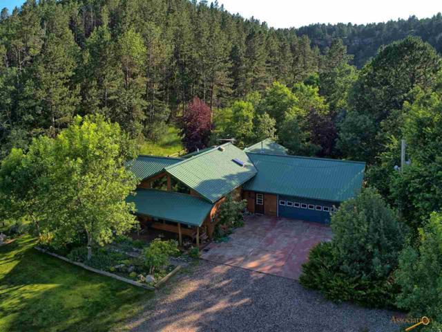 13901 Battle Creek Rd, Hermosa, SD 57744 (MLS #145117) :: Christians Team Real Estate, Inc.