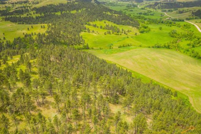 14011 Hwy 36, Hermosa, SD 57744 (MLS #145191) :: Christians Team Real Estate, Inc.