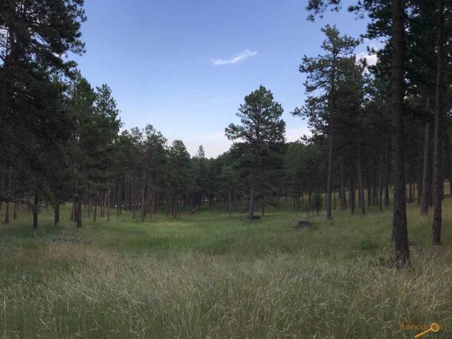 TBD Pine Dr, Rapid City, SD 57702 (MLS #145373) :: Black Hills SD Realty