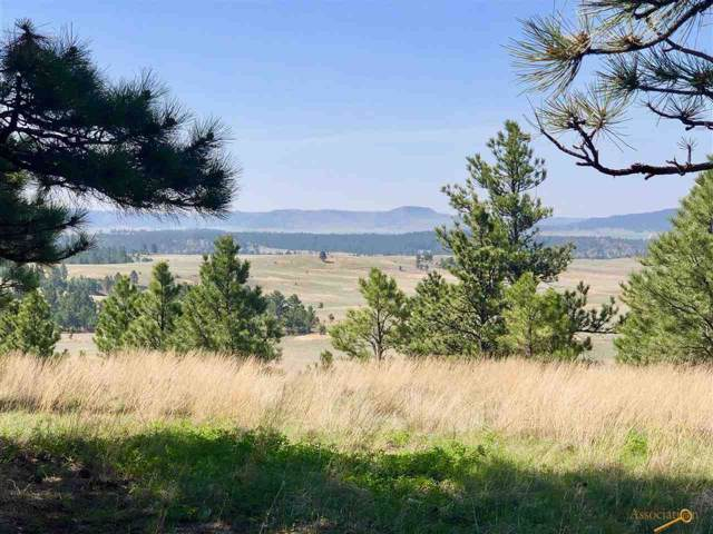 Pronghorn 4 Stage Stop Rd, Custer, SD 57730 (MLS #145378) :: Christians Team Real Estate, Inc.