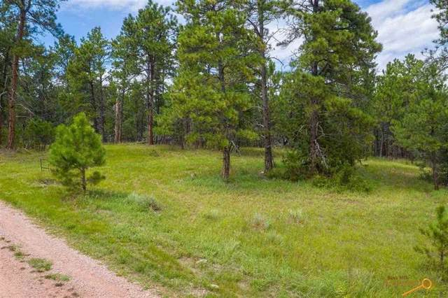 26231 Country Club Dr, Hot Springs, SD 57747 (MLS #145526) :: Dupont Real Estate Inc.