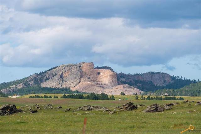 Lot 4 Medicine Mountain Rd, Custer, SD 57730 (MLS #145555) :: VIP Properties