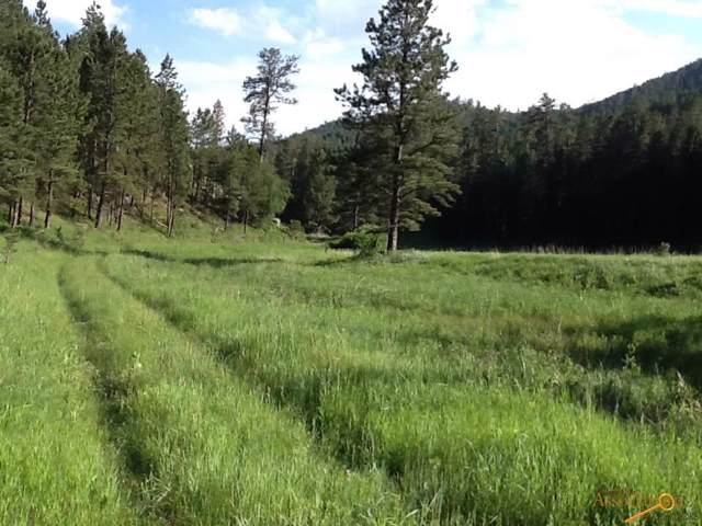 TBD Flynn Creek Rd, Custer, SD 57730 (MLS #145573) :: VIP Properties