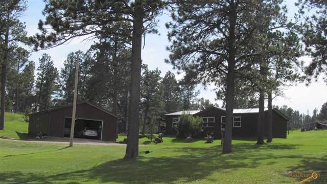 11707 E Paradise Dr, Hill City, SD 57745 (MLS #145644) :: Heidrich Real Estate Team