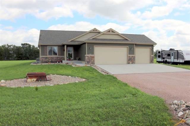 16324 Red Cedar Rd, Piedmont, SD 57769 (MLS #145651) :: VIP Properties