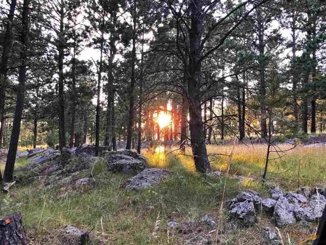 12100 Other, Custer, SD 57730 (MLS #145789) :: Heidrich Real Estate Team