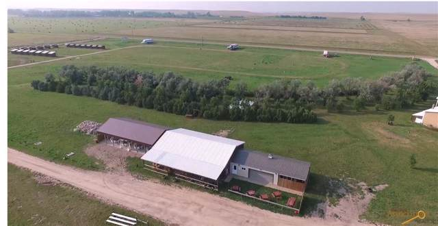 2305 Elk Creek Rd, Piedmont, SD 57769 (MLS #146092) :: Heidrich Real Estate Team